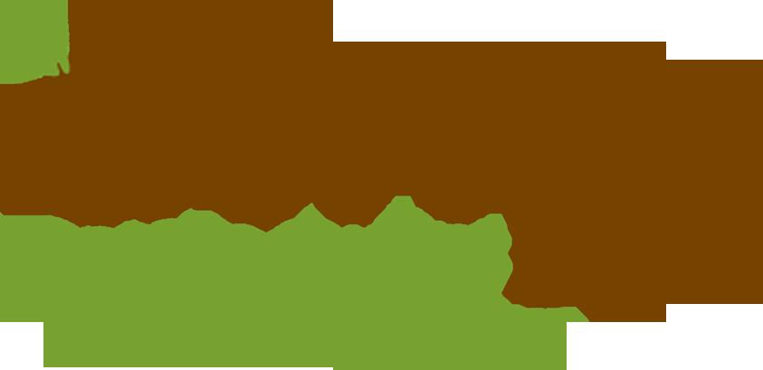 Ontario Student Nutrition Program banner