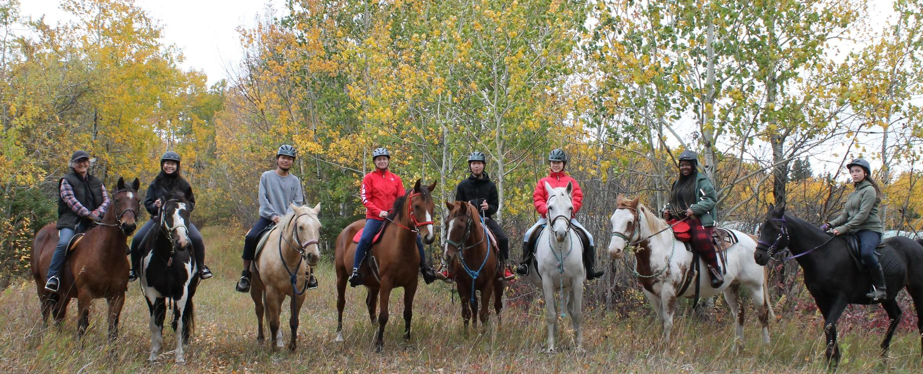 students on a trail ride with horses