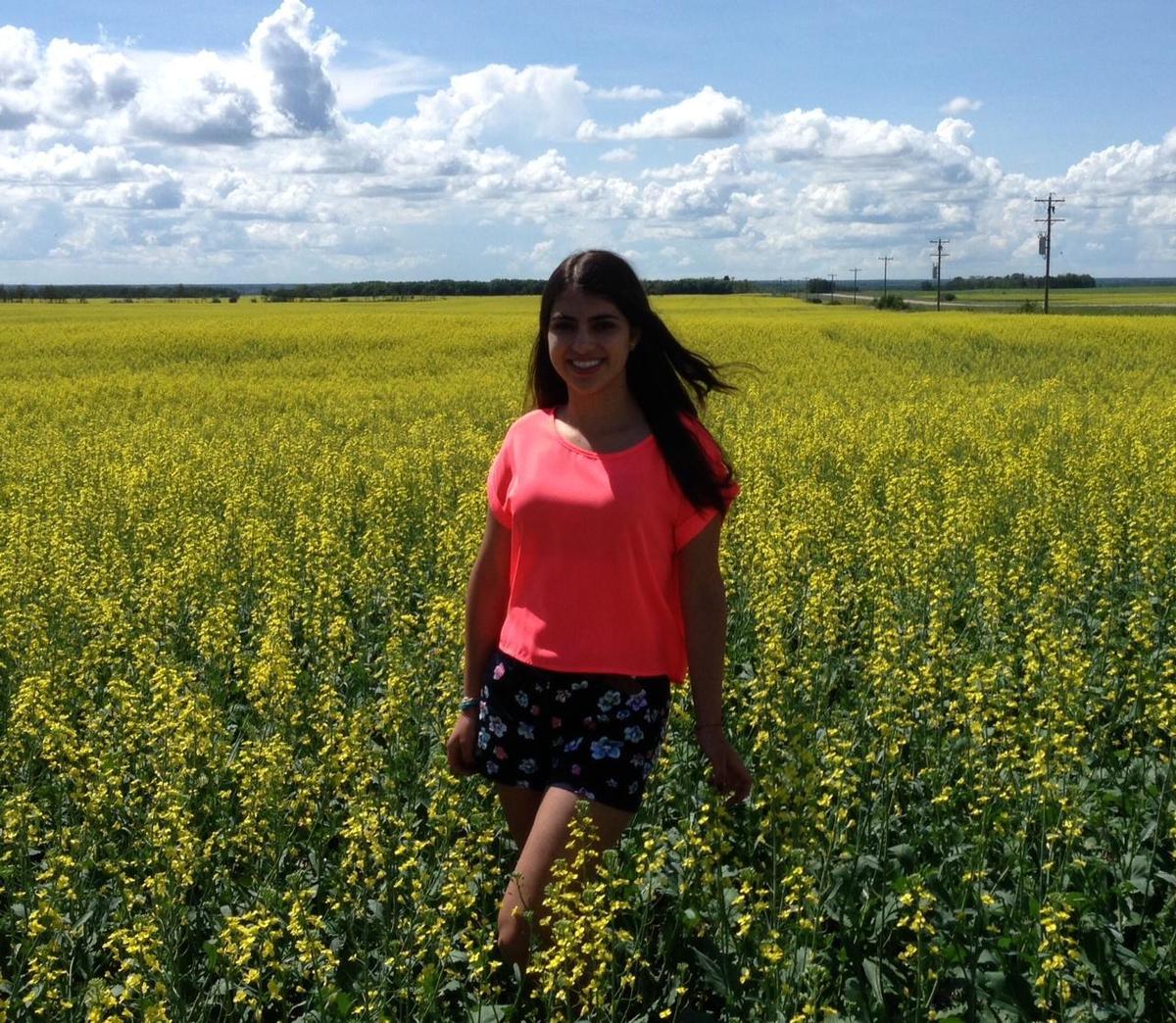 Canola Field in the Prairies