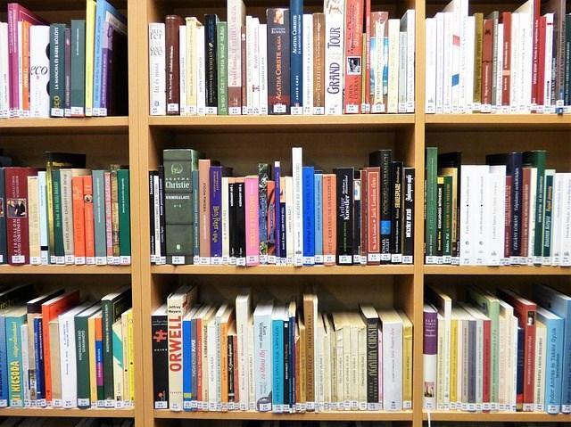 bookshelf-1815074_640.jpg