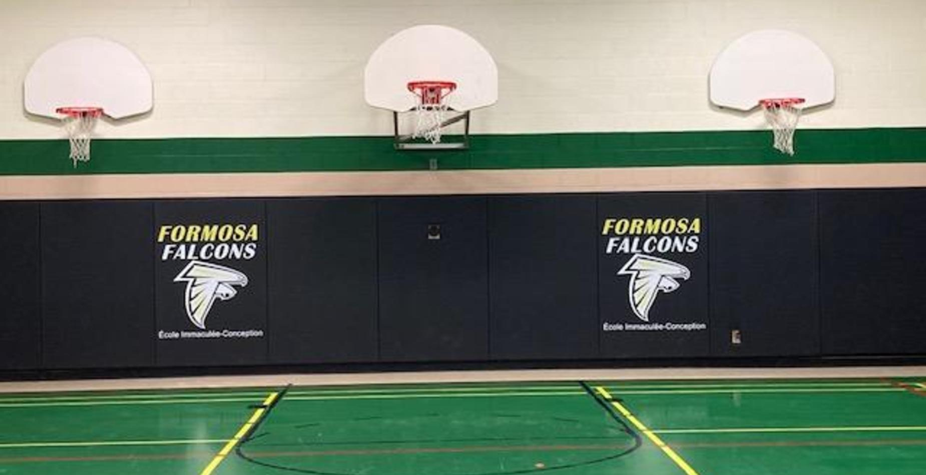 Photo the gym with school logo and basketball net.
