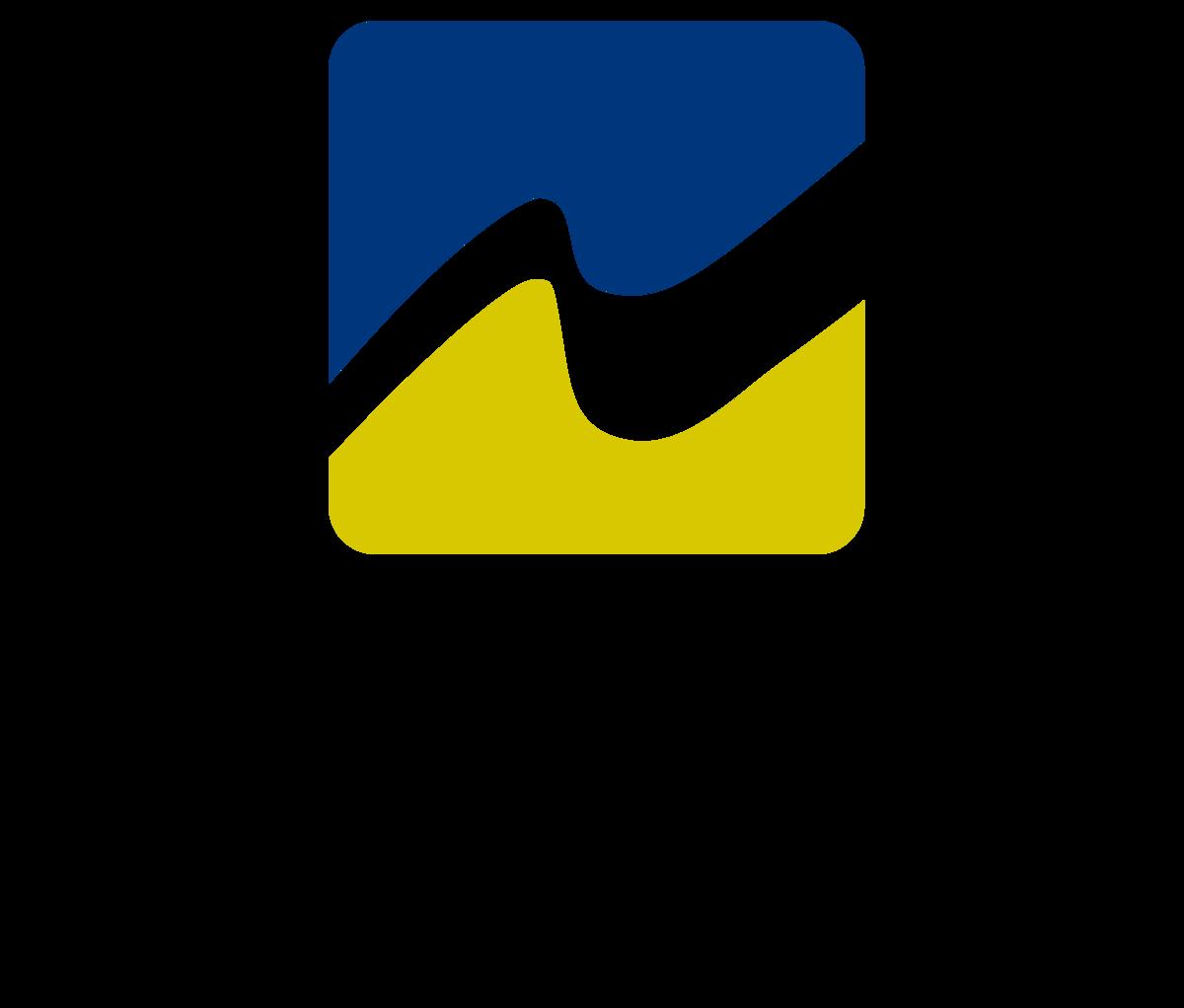 NIC Logo.png
