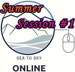 SSO Logo SS1.jpg