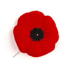 Remembrance Day 2020 Featured Photo