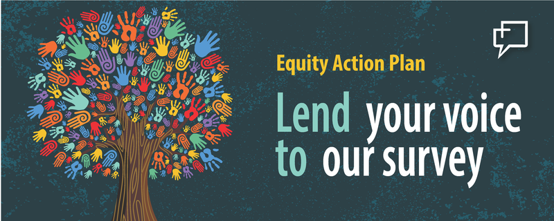 Equity Action Plan Banner