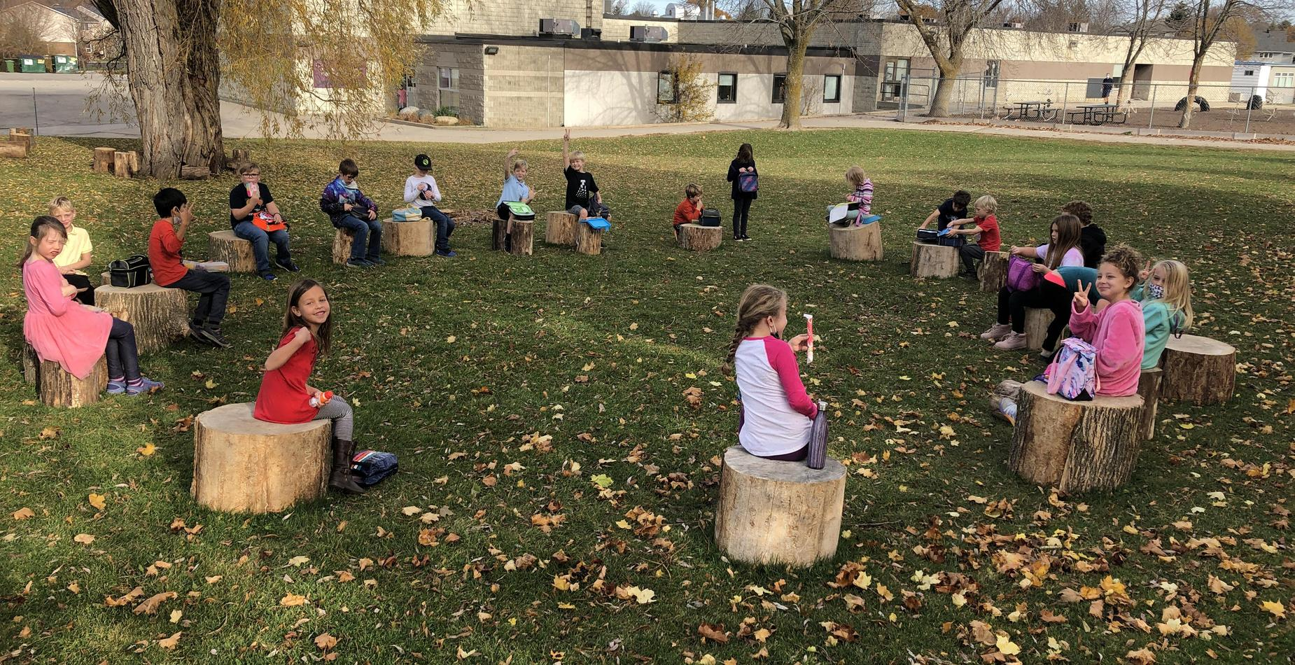 Primary Students sitting on stumps in learning circle