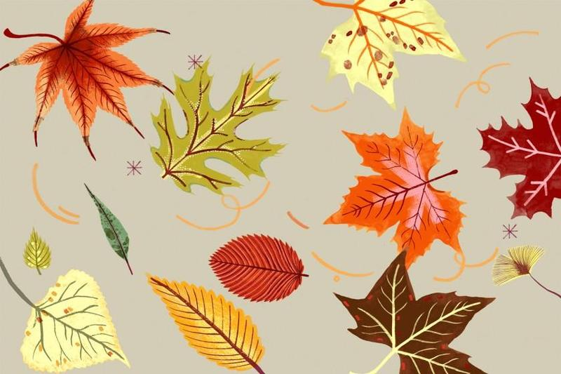 Wear your fall colours  Wednesday, Oct 20th Featured Photo