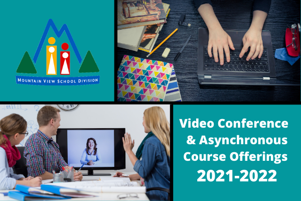 Video Conference and Asynchronous Course Offerings