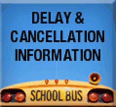 delay and cancellation info