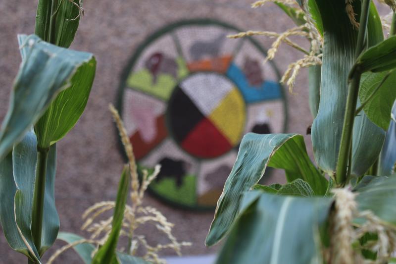 Medicine wheel with green space around it
