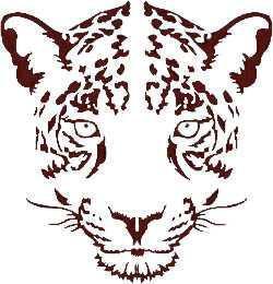 Mick Jaguar (JPII Athletics Logo)