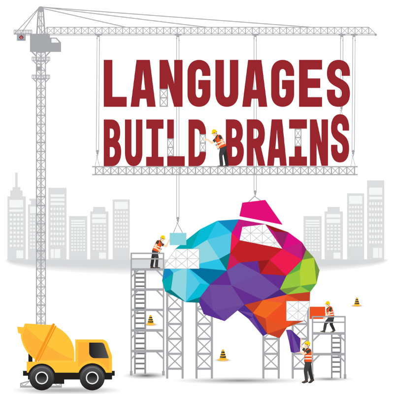 Languages Build Brains