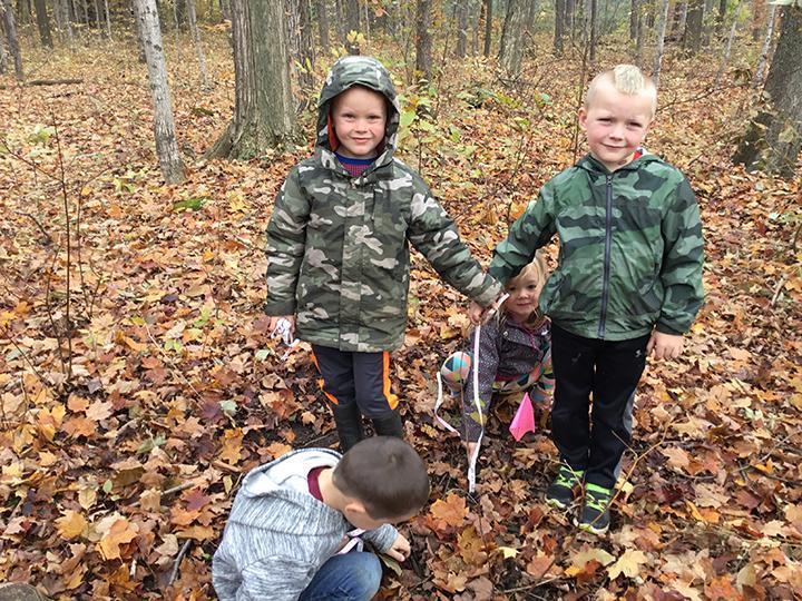 Kindergarten kids looking at tree seedling