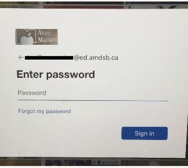 Password field for Active Directory login