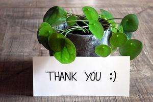 thank you card in front of a plant