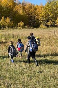 Four students walking through a grassy field towards the bush.