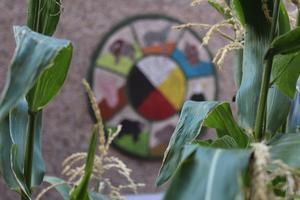Medicine wheel with green space around it