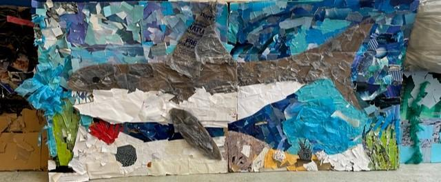 Sydney and Mikayla's great white shark