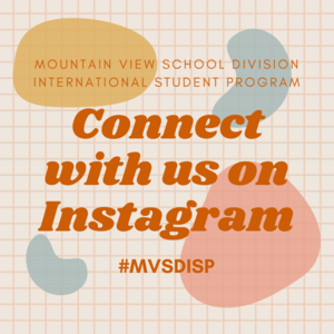 Connect with us on INstagram (1).png