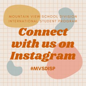 Follow us on Instagram @mvsdisp Featured Photo