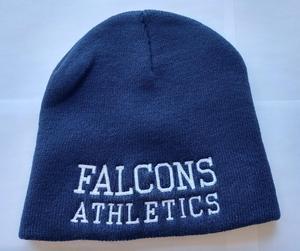 falcons hat.jpg