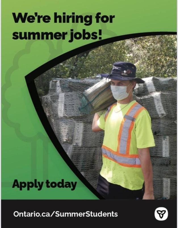 Summer Jobs 1.jpg