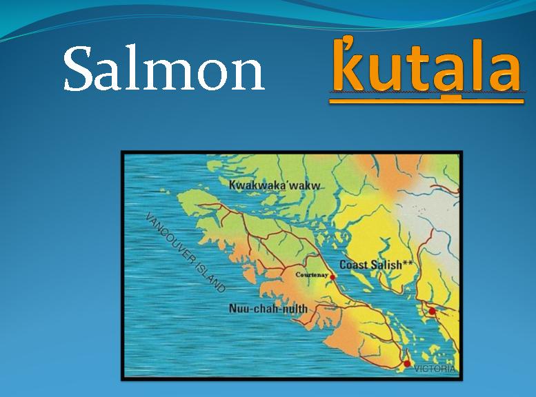 salmon Kwakwala.png