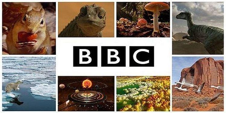BBC streamed content through curio.ca