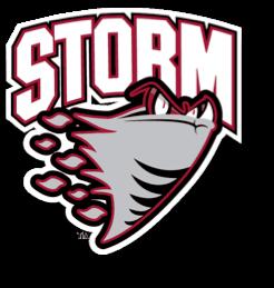 RES Storm Symbol