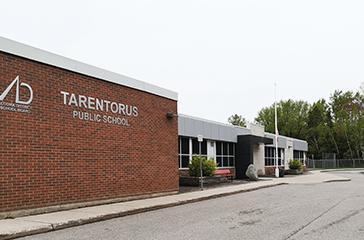 Tarentorus Public